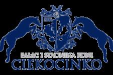 Logo-Stadnina-281SILVER-e1512990918496-225x150